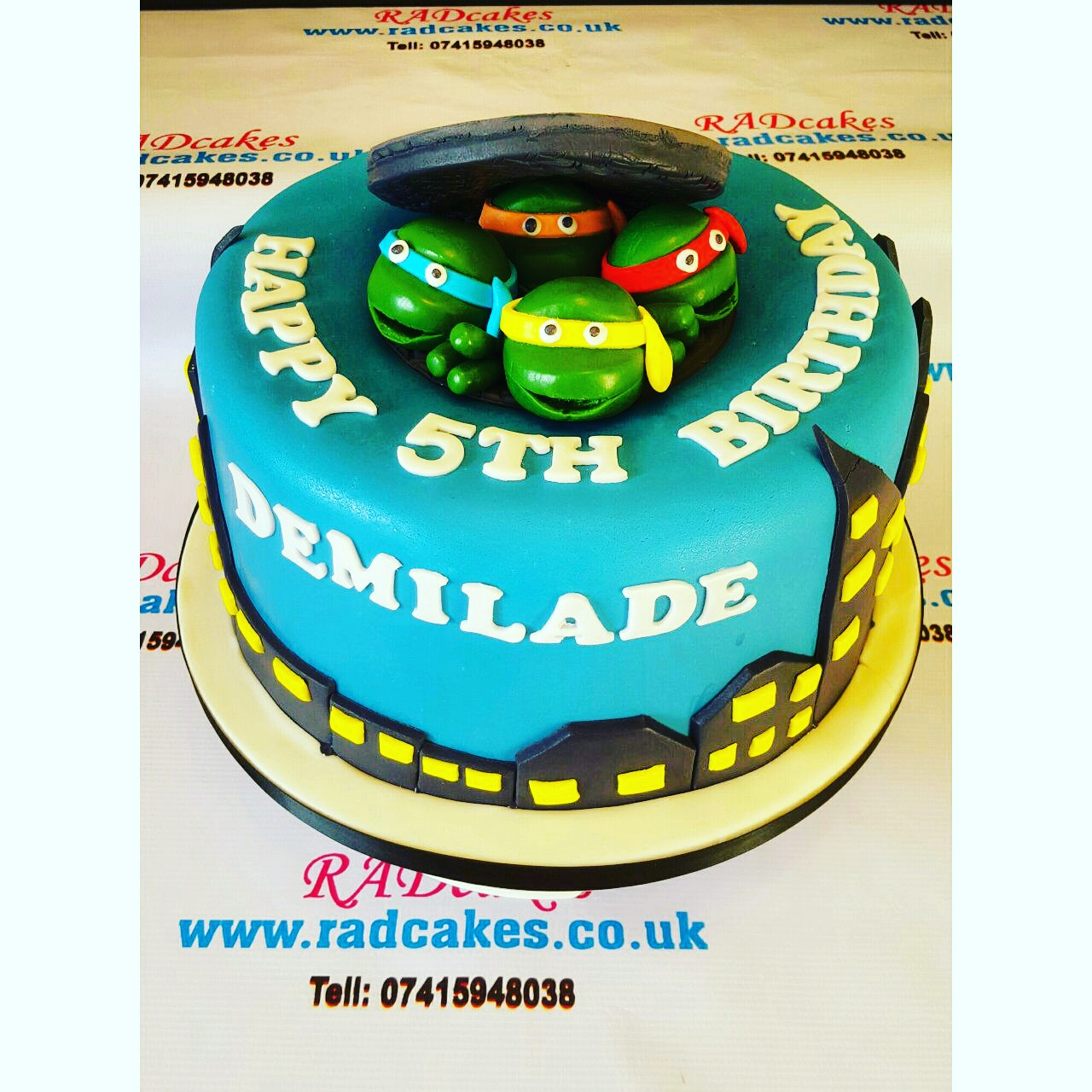 Ninja Turtle Cake Cartoon Character